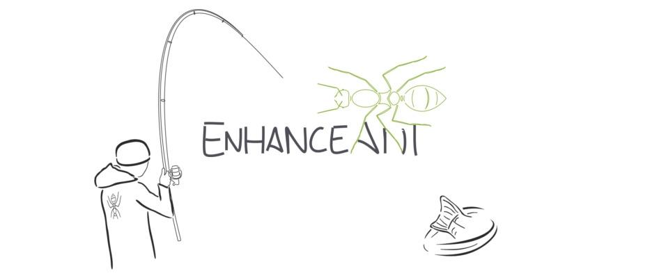 Enhanceant