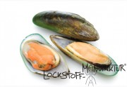 Mussel Extract