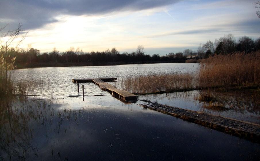 Karpfenangeln im Winter - Gewässerwahl und Location