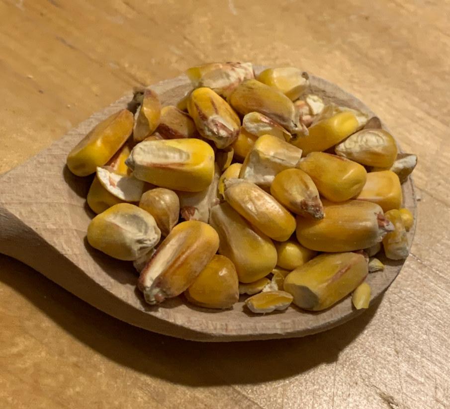 Kukurydza - klasyk wśród przynęt karpiowych.  Dzięki dodatkowej porcji atraktantów i atraktorów jest idealnym dodatkiem do kulek.