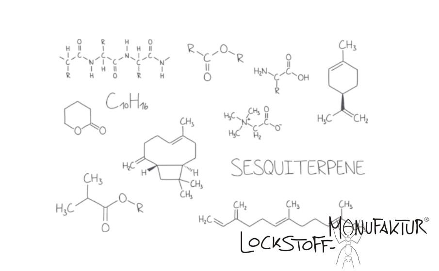 Zastosowanie enzymów tworzy dużą liczbę bardzo atrakcyjnych i atrakcyjnych związków.