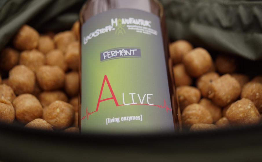 Stosowanie enzymów w łowieniu karpi na kulki proteinowe jest bardzo łatwe - dzięki żywym enzymom zawartym w Alive.