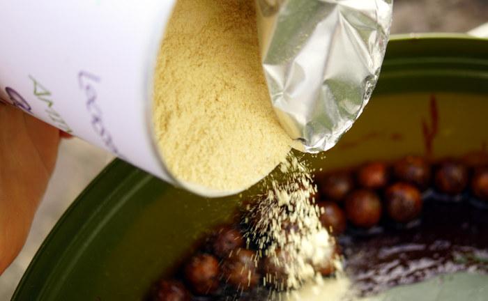Die im Amino-Glue enthaltenen Aminosäuren, Peptide und Proteine locken den Karpfen auch bei niedrigen Wassertemperaturen stark an!