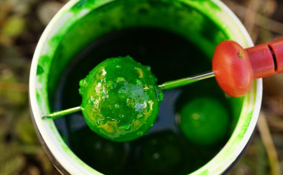 Citrus Squid Dip ist ein fängiger, uv-aktiver Dip für das Angeln mit Boilies auf Karpfen